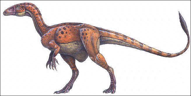 """Que signifie """"Sin"""" dans Sinornithosaurus, Sinraptor, Sinosauropteryx, ... ?"""