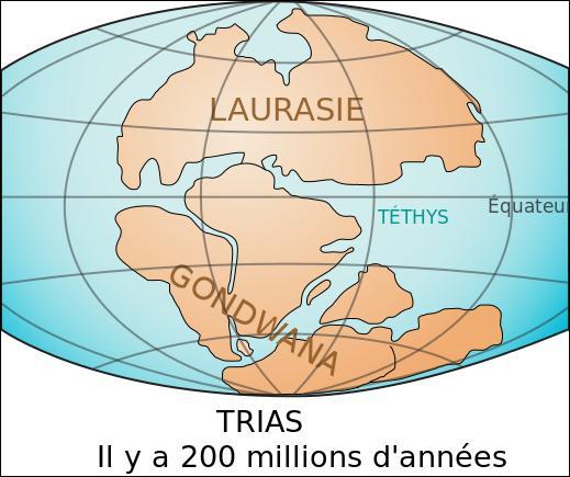 Comment s'appelle la mer du Trias avec la Panthalassa ?