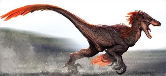 Dans quel état des Etats-Unis a-t-on découvert l'Utahraptor ostrommaysorum (voleur de l'Utah) ?