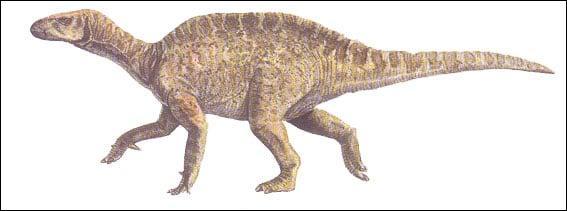 Sur quelle île anglaise a-t-on découvert le Vectisaurus ?
