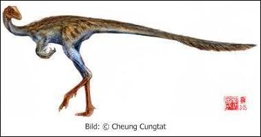 Existe-t-il des dinosaures avec un nom en X ?