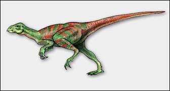 De qui Fabrosaurus australis tient-il son nom ?