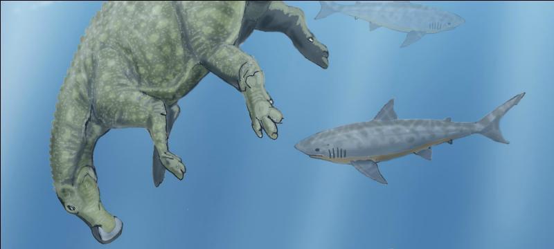 Certains hadrosaures (dinosaures à bec de canard) avaient-ils les pattes palmées ?