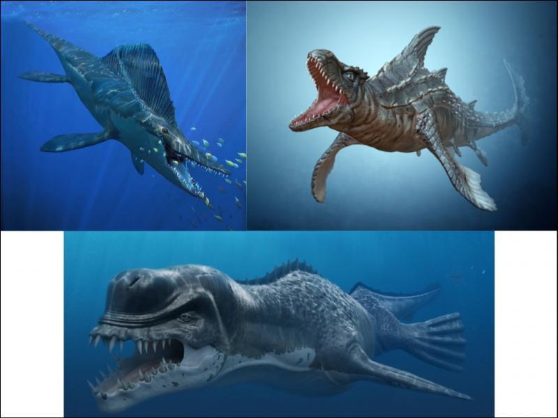 Ces 3 créatures ont-elles réellement existé ?