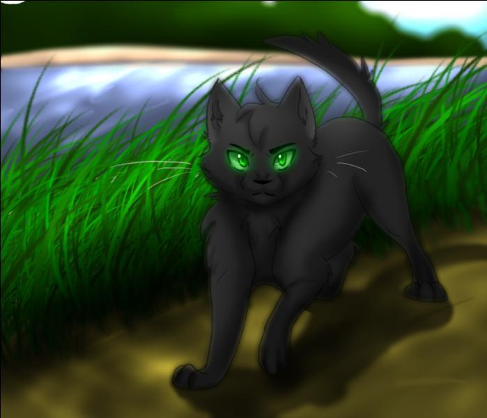 Killer Warrior Cats