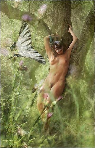 Qui sont ces nymphes très timides et protectrices des forêts et des bois ?