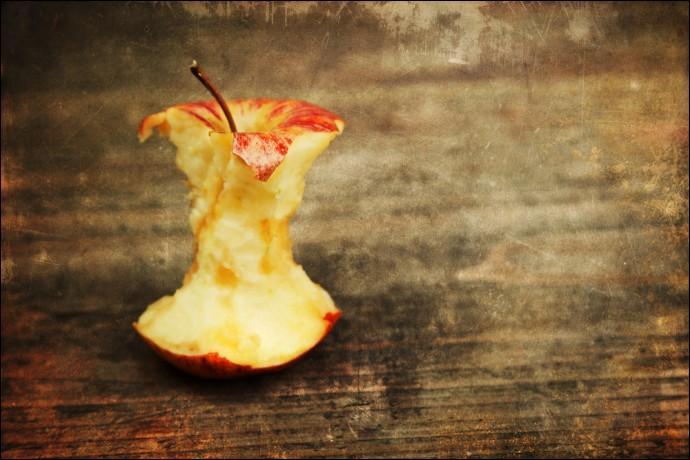 Combien de temps une pelure d'orange ou un trognon de pomme mettent-ils à se décomposer ?