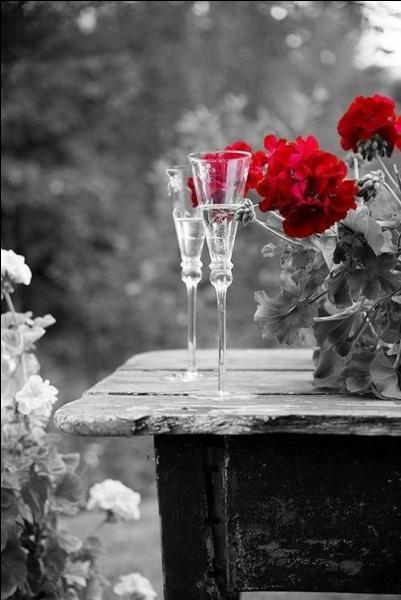 """Qui chantait """"J'ai cueilli des fleurs et j'ai sifflé tant que j'ai pu, j'ai attendu attendu, elle n'est jamais venue"""" ?"""