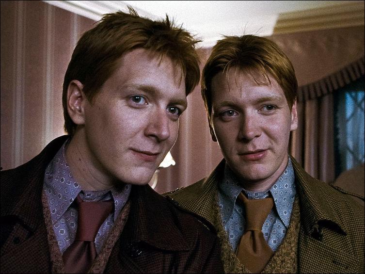 Quel Weasley meurt ?