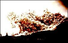 De quoi est composée la nuée ardente ?