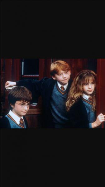 Qu'offre Hagrid à Harry à la fin du 1er film ?