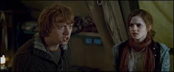 Pourquoi Harry et Ron se disputent-ils dans le 7ème volet de la saga ?