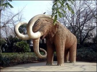 Quel est le nom de ce mammifère, aujourd'hui disparu ?