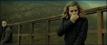 Sur qui Hermione envoie-t-elle le sortilège Confindus ?