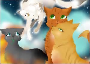 Qui sont les chats sur cette image ?
