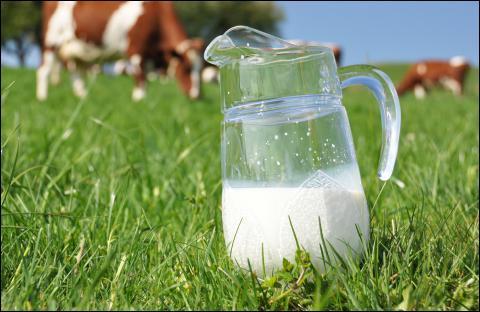 """""""Il ne sert à rien de pleurer sur le lait ________."""""""