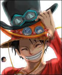 Qui sont les frères de Luffy ?