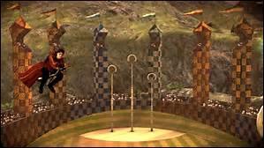 Si tu pouvais jouer au Quidditch, quel poste occuperais-tu ?