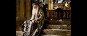 Avec quel professeur Harry va-t-il avoir des cours particuliers cette année ?
