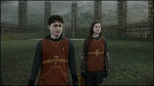 Qui est le gardien de l'équipe de Quidditch de Gryffondor ?