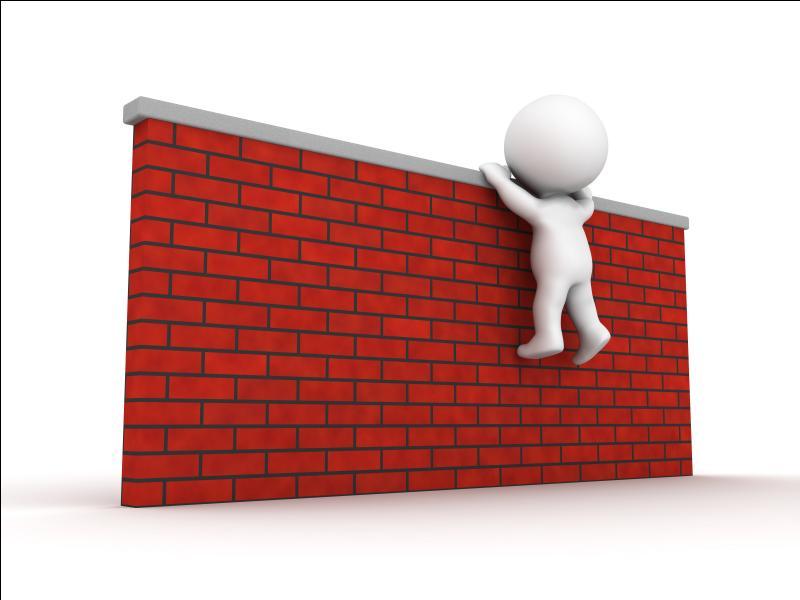 Tu souhaites faire quelque chose que tu juges risqué, quel est pour toi le plus grand obstacle ?