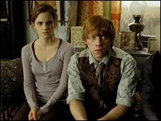 Qu'offriras-tu à Harry Potter pour Noël ?