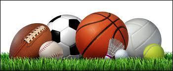 Parmi les sports ci-dessous, lequel est votre préféré ?