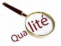 Quelle est ta principale qualité ?