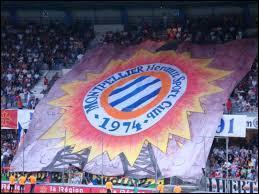 Quels frères vont jouer ensemble à Montpellier cette saison ?