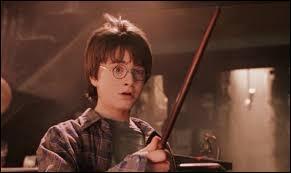 La baguette d'Harry est en :
