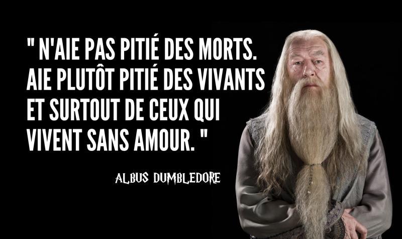 Si je te dis Albus Dumbledore, tu dis :