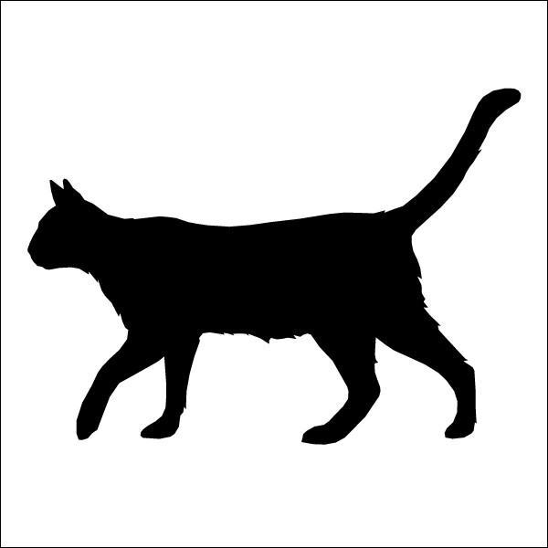 Quel animal est représenté ?