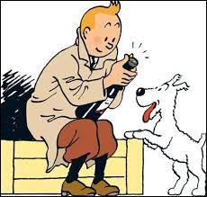 """Dans """"Les Aventures de Tintin"""", quelle est la race de Milou, le chien ?"""