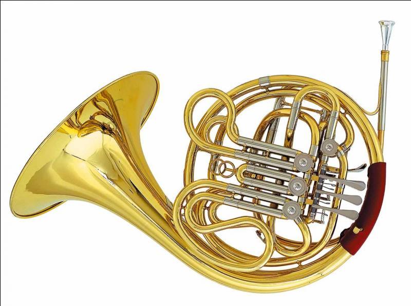 """Quel est le nom de cet instrument à vent de la famille des cuivres ? Ajoute une lettre au mot """"or"""" pour le savoir."""