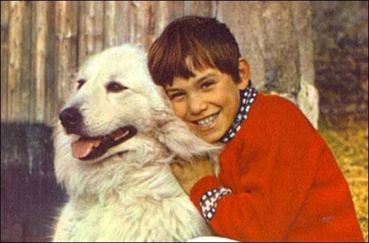 Un enfant, dont la mère est morte en lui donnant naissance, est recueilli par un vieux berger. Quelques années plus tard, une chienne, née le même jour que cet enfant, s'échappe d'un chenil. L'enfant lui sauve la vie. Ils deviennent alors inséparables.