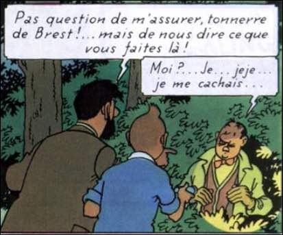 """Dans """"L'Affaire Tournesol"""", quel est le nom des assurances représentées par Séraphin Lampion ?"""