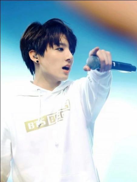 Si Jungkook n'avait pas été chanteur, il aurait aimé être :