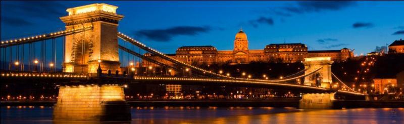 Le Danube traverse de nombreux pays. Lesquels ?