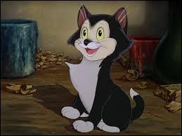 """Dans """"Pinocchio"""", quel est le nom du petit chat de Geppetto ?"""