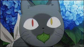 Quel est le nom de la plante que mange Babu ?