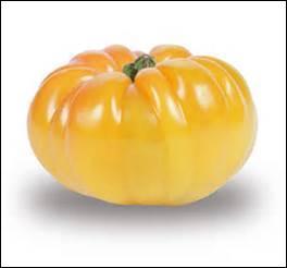 L'absinthe et l'ananas sont des variétés de tomates.