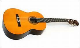 Aline n'a ensuite pas hésité à t'offrir un instrument que tu adores, la guitare, un instrument de __ cordes à pincer.