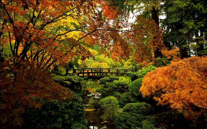 Quel genre de paysage préfères-tu ?