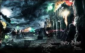 Laquelle de ces familles ne repose pas dans le même cimetière que celui de Lily Potter ?