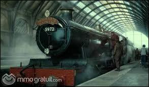 Qui se trouvait sur le même balai que Ron lors de la nuit où 7 Harry Potter sont partis de chez les Dursley ?