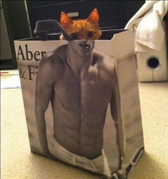 Quel animal s'est réfugié dans ce sac ?