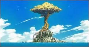 Quizz Fairy Tail