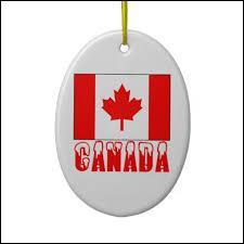Vous avez programmé un voyage au Canada avec votre meilleur(e) ami(e), mari/épouse, enfant... au choix..., et avez intégralement payé l'Agence de voyage. Un empêchement de dernière minute vous interdit de partir, mais ne constitue pas un motif légitime de remboursement. Que faites-vous ?