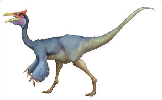 Quel caractère le pélécanimimus a-t-il en commun avec le pélican ?