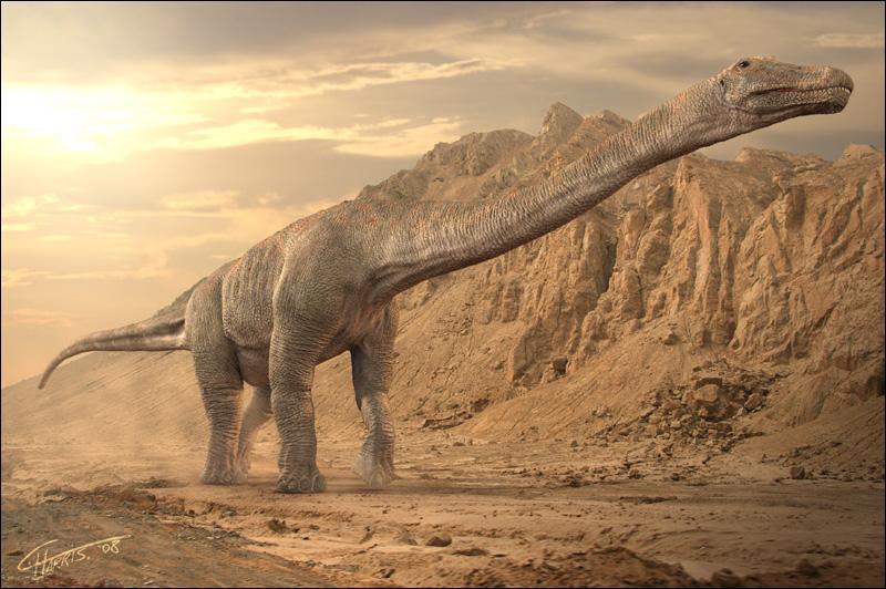 À quelle famille appartenaient la plupart des derniers grands sauropodes (dinosaures à long cou) ?